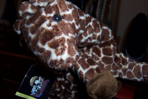 THE GIRAFFE IS FOUND! (Stalking and Murdering of a ... - photo#37